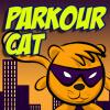 Parkour Cat
